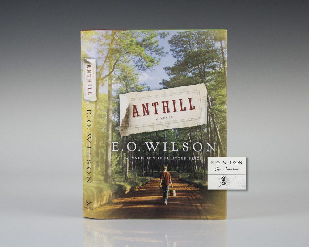 Anthill.