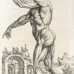 De humani corporis fabrica libri septem.