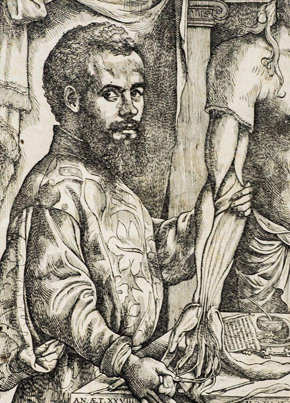 Sixteenth century Flemish anatomist and physician Andreas Vesalius