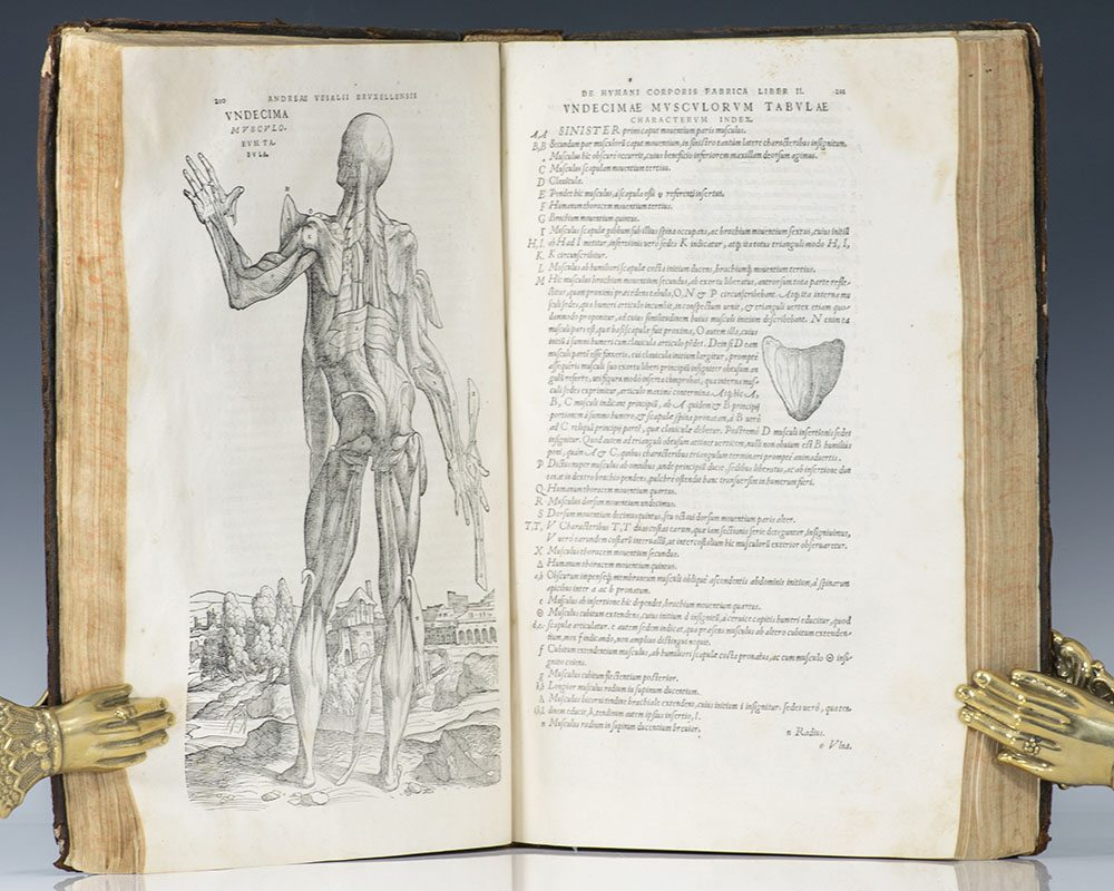 De Humani Corporis Fabrica Libri Septem. (On the Fabric of the Human Body in Seven Books).