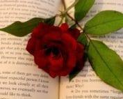 rare-books-valentines-day-gift