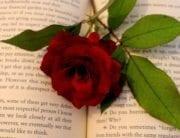 Rare Books for a Romantic Valentine's Day