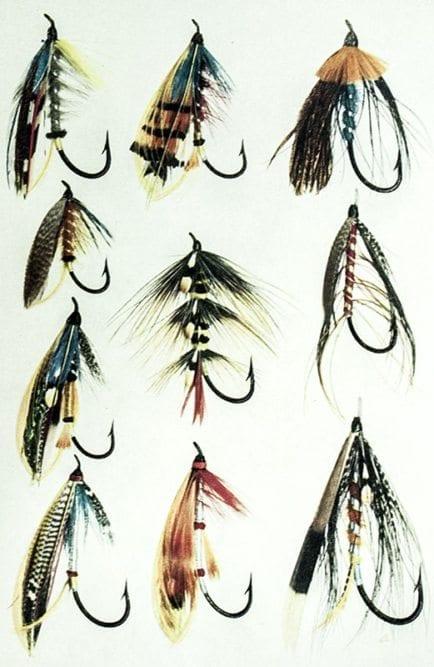 Salmon Fishing.