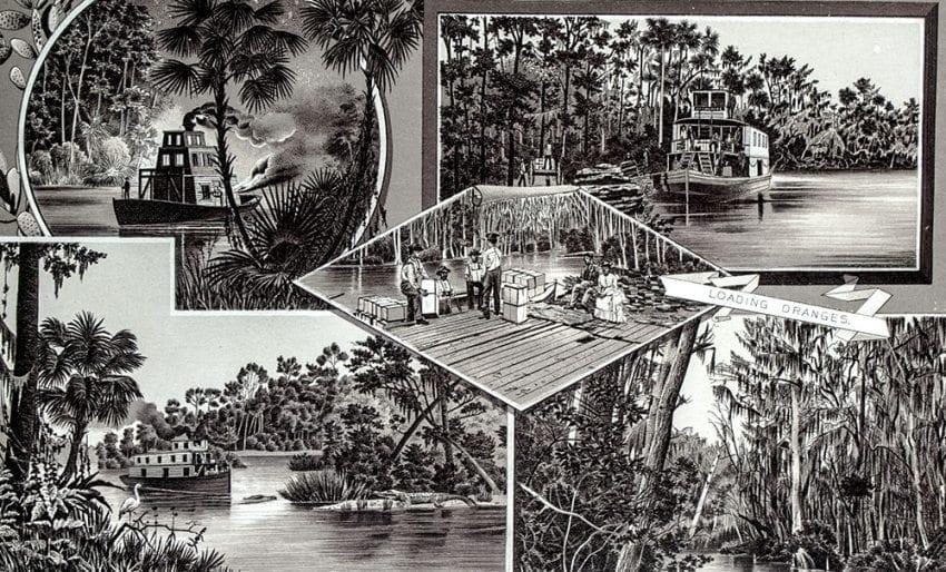 Views of Florida.
