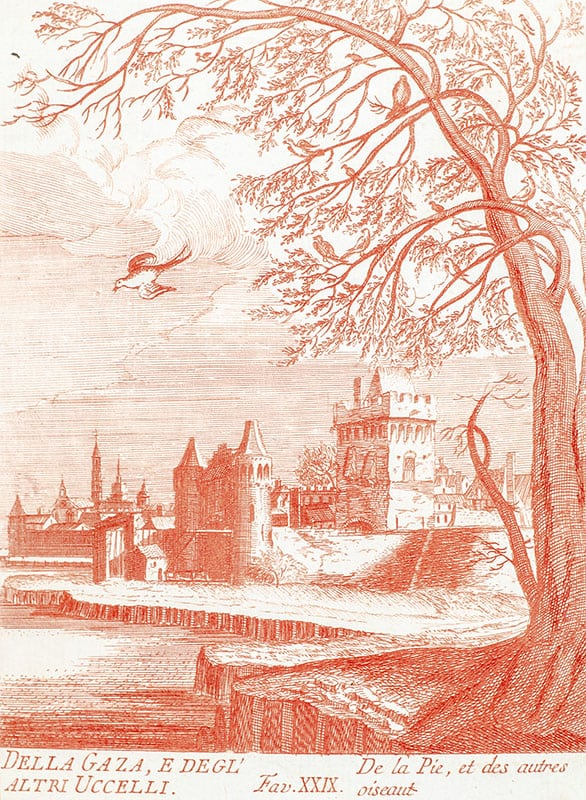 Raccolta di varie Favole Delineate, ed incise in Rame (Volume 4).