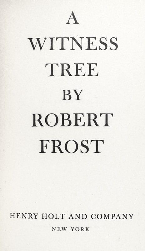 A Witness Tree.