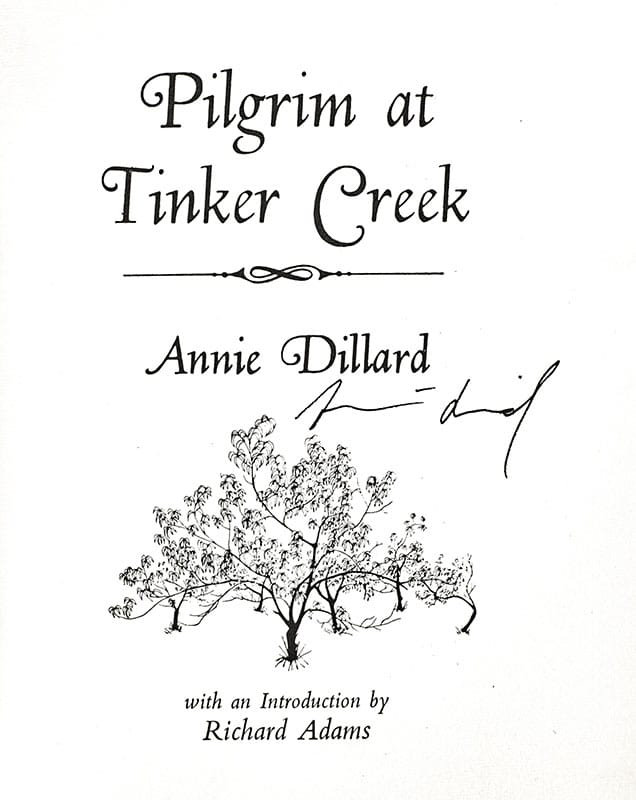 Pilgrim At Tinker Creek.