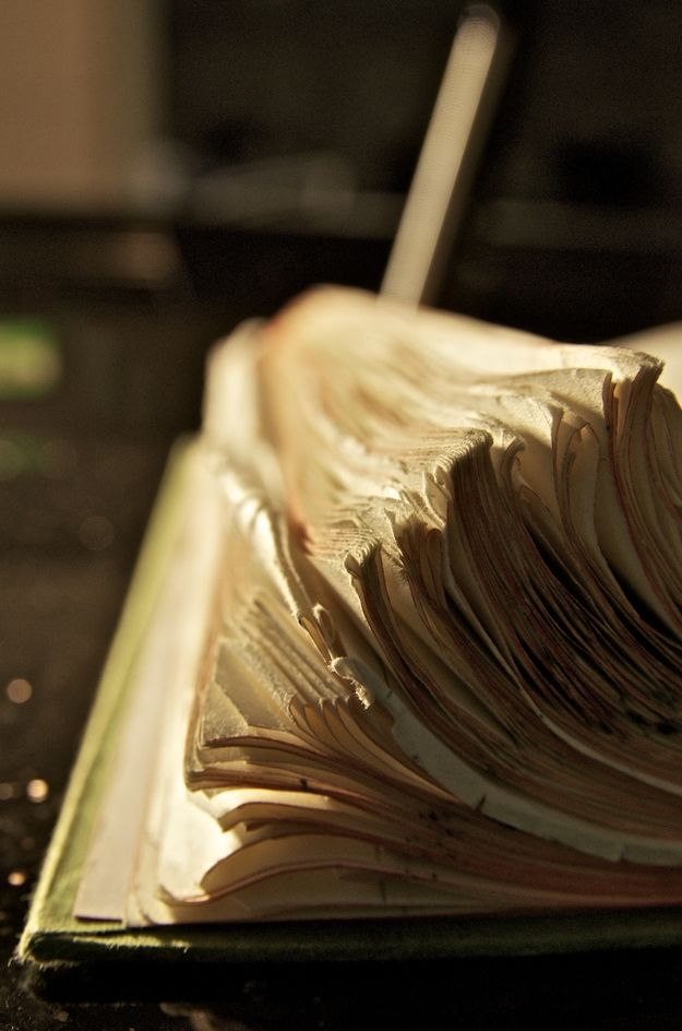 dog eared book pages