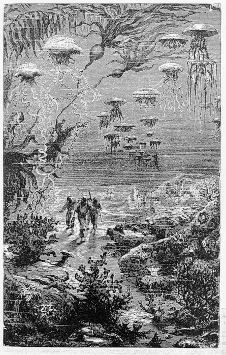 Twenty Thousand Leagues Under the Sea illustration