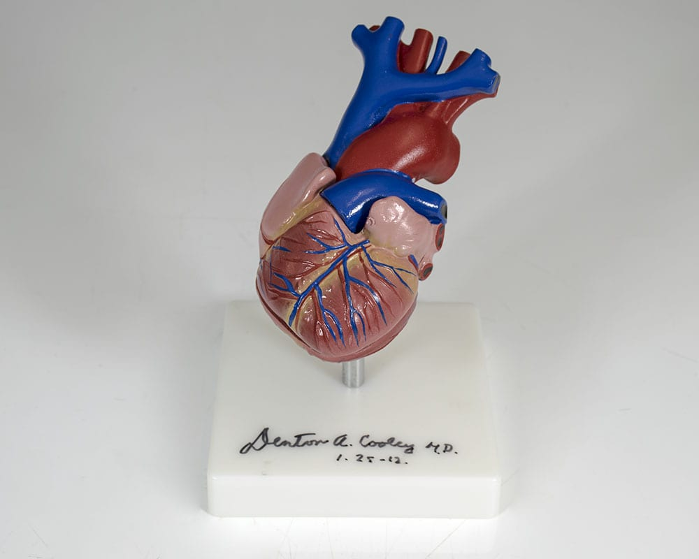 Denton Cooley Signed Anatomical Heart Model